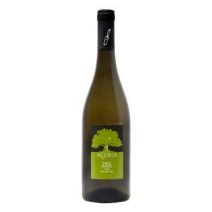 Etichetta Pinot bianco Fco Scubla